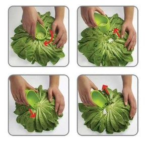 Vacu Vin Pratik Salata Soyucu - Thumbnail